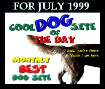Cool dog site of the month!