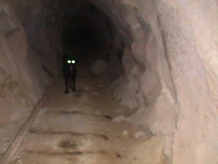 Ripley peers out from the interior of a mine
